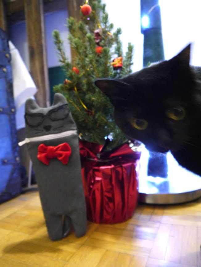 cat-georgette
